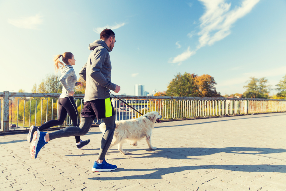 The benefits of four-legged friends